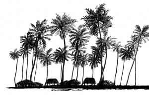 coconut trees-01